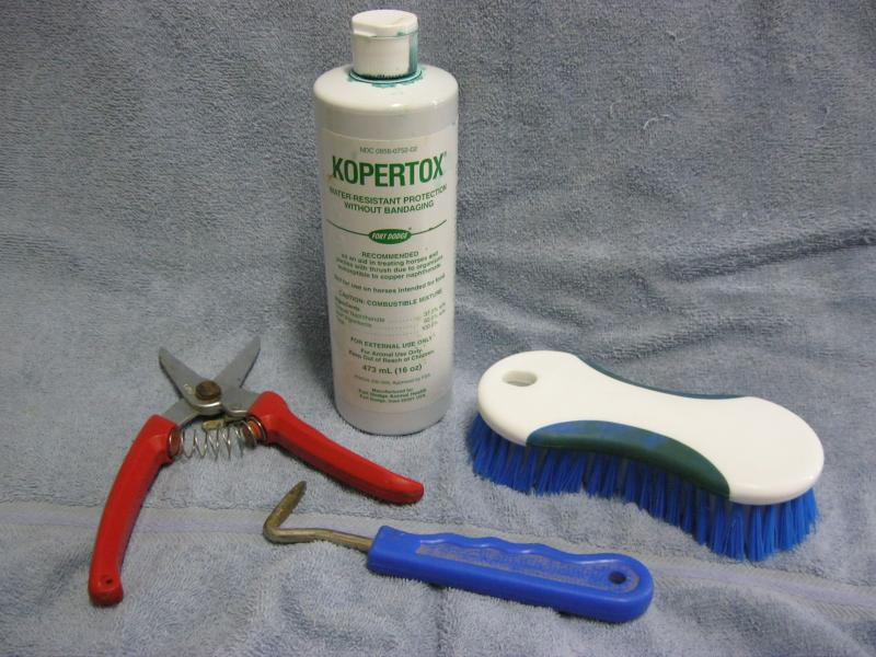 hoof trimming essentials